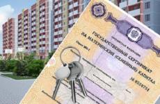 Как продать квартиру в ипотеке с материнским капиталом?